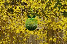 Cute apple-shaped bird feeder for yard decor and to enjoy watching wild birds feeding!