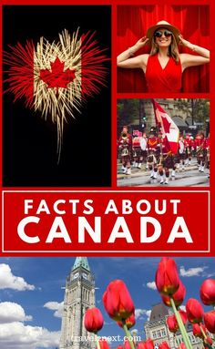30 Cool Facts About Canada. Canada is the land of the maple leaf, the true north strong and free, a place where the national symbol is the busy beaver and the varied landscapes are more stunning in real life than they are in the brochures. #canada #travel #northamerica #facts #canadainfo #travelinfo #travelideas Alberta Canada, Canada Canada, Visit Canada, Canada Travel, Travel Usa, Beautiful Places To Travel, Best Places To Travel, Vancouver, Facts About Canada