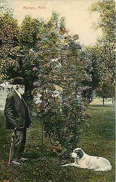 Manton Michigan MI 1908 Old Man Dog Admire Flowering Bush Vintage Postcard Manton Michigan MI circa 1908 Old man and his dog admiring a flowering 10 foot plant. Unused Will P. Canaan collectible antiq