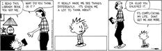 Calvin and Hobbes - book made me think