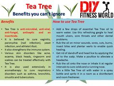 Tea Tree - Benefits you can't ignore