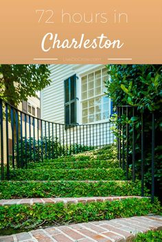 Explore what to see, where to eat and where to stay with this guide of 72 hours in Charleston, South Carolina! Oh The Places You'll Go, Places To Travel, Places To Visit, Vacation Destinations, Vacation Spots, Vacations, Costa, East Coast Road Trip, 72 Hours