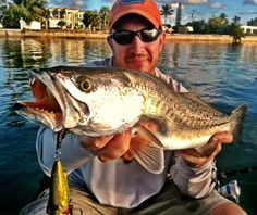 BOOM!!  Gator trout on the Unfair Lures Pearl Gold Rip-N-Slash!  http://www.treasurecoasttackle.com/unfair-lures-pauls-rip-n-slash/