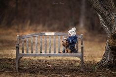 Park It on a Bench Photography Mini Sessions, Farm Photography, Children Photography, Maternity Photography, Bird Painting Acrylic, Pic Pose, Dogs And Kids, Amazing Art, Cool Photos