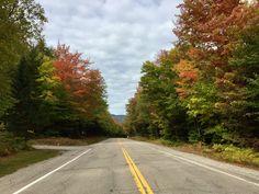 Fall up North