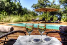 Photos - Peering out beneath giant ebony trees, Camp Moremi brings true meaning to the word safari in the Xakanaxa area of the Moremi Game Reserve. Game Reserve, Out Of This World, Alcoholic Drinks, Camping, Gallery, Places, Photos, Campsite, Pictures