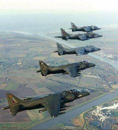 RAF Harriers and Royal Navy Sea Harrier in flight.