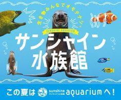 2016年サンシャイン水族館の夏休み! Sale Banner, Web Banner, Banners, Calendar Design, Japanese Design, School Design, Business Design, Banner Design, App Design
