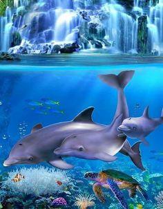 Bed Duvet Covers, King Of Kings, Under The Sea, Koi, Dolphins, Bible Verses, Aquarium, Fish, Nature
