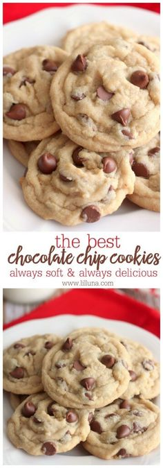 Our all-time FAVORITE Chocolate Chip Cookies recipe! Everyone will love these soft chocolatey cookies! Our all-time FAVORITE Chocolate Chip Cookies recipe! Everyone will love these soft chocolatey cookies! Soft Cookie Recipe, Cookie Recipes, Baking Recipes, Cookie Ideas, Egg Recipes, Baking Ideas, Fast Cookies Recipe, Dozen Cookie Recipe, Bake Sale Recipes