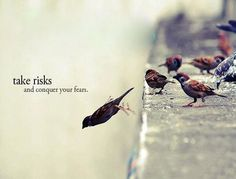 Take risks and conquer your fears.