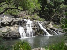 Booloumba Falls, Conondale National Park   Day Trips from Brisbane
