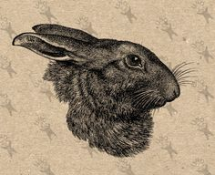 Rabbit Vintage Image Hare Easter Instant Download Digital retro drawing printable graphic for kraft pillow tote tea towels t-shirt HQ 300dpi by UnoPrint on Etsy #hq #png #bw #Ephemera #diy #old #book #illustration #gravure #inspiration #retro #antique #vintage #300dpi #craft #draw #drawing #black #white #printable #crafts #transfer #decor #hand #digital #collage #scrapbooking #quality