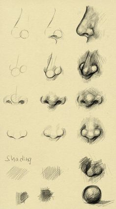 Nose reference by ryky on deviantART