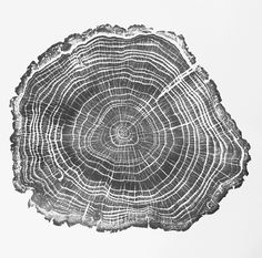 English Oak by Bryan Nash Gill - relief print