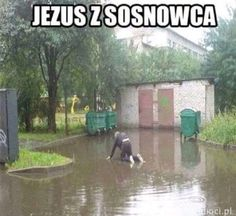 Very Funny Memes, Haha Funny, Funny Cute, Funny Dogs, Funny Animals, Lol, Funny Lyrics, Polish Memes, Weekend Humor