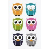 Owl Magnets 6ct - Party City.  Going to put #s on these for the metal pan that I pinned that keeps track of attendance/RR etc..