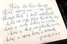 Proverbs 30:18-19 How a man loves a woman