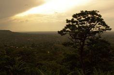 Uganda 🏆 Vize Meister im Kaffeeanbau - sowohl in Afrika als auch für ☕ Robusta Kaffee weltweit. Alle Fakten und Kaffee Empfehlungen hier: http://bunaa.de/uganda/
