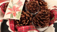 Holiday Hostess Gift: Pine Cone Fire Starters - on Steven and Chris
