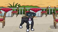A Playful Boxer Dog With A Restaurant Patio Overlooking The Ocean Background:  A dog with white and dark gray fur droopy ears short tail and black nose smiles with lips parted to show a pink tongue and A patio with a blue sea view beige sand green plants five round tables wrapped in white and red cloth brown chairs with red cushion