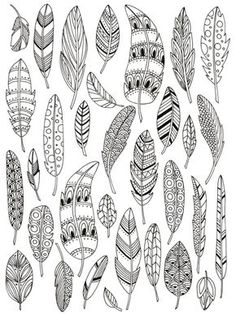 Feathers #adult #colouring