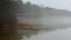 Lake Tuscaloosa Fog Jan 2015