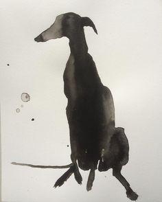 Black Galgo #drawing365 #inkdrawing #galgo#