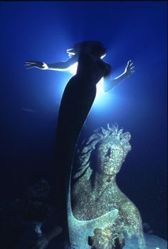Bill Nadeau Photo of Amphitrite on the shore dive at Sunset House