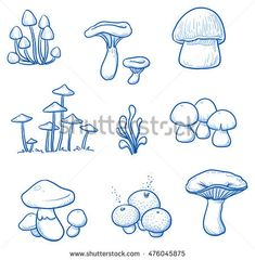 Set different mushrooms mushrooms hand-drawn stock vector (detailed . - Set different mushrooms mushrooms hand drawn stock vector (listed) 476045875 – set of different m - Art Drawings For Kids, Outline Drawings, Art Drawings Sketches, Doodle Drawings, Animal Drawings, Doodle Art, Mushroom Drawing, Mushroom Art, Amazing Animals