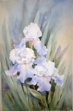 112 best white flower paintings images on pinterest flower art jennys watercolor iris mightylinksfo