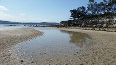 Great Bay (February 2016) - Bruny Island