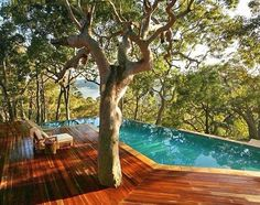 Deck Inspiration  Perfect for a hot summer day  Source: Pinterest  Love the tree positioning and infinity edge pool   #landscaping #landscapeconstruction #morningtonpeninsula #coastalcreationslandscaping #builder #architecture #homedesign #garden #outdoors #instagood #instadaily #picoftheday #inspiration #melbourne #beautiful #deck #outdoorliving #pool #infinityedge by coastal_creations_au