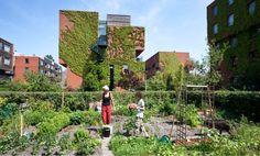 Urban living in Amsterdam with your garden at the front door - KCAP landscape design; architecture: DKV, Neutelings Riedijk, Meyer en van Schooten, Zeinstra van der Pol, KCAP