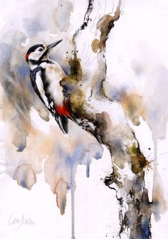 woodpecker in spring The Effective Pictures We Offer You About Birds Drawing A quality picture can t Bird Artwork, Watercolor Artwork, Watercolor Sketch, Watercolor Bird, Watercolor Animals, Watercolor Illustration, Art Aquarelle, Organic Art, Bird Drawings