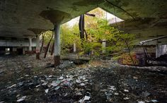 Desolate: A former factory lies in ruins in Detroit where almost a third of the landscape has turned to wasteland