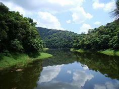 o Parque Estadual da Cantereira fica na Zona Norte e é uma excelente opção de atração natural (Foto: Davis Alves Santana/VC no G1)