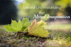 Toward Understanding the Moral Imagination -