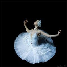 Anastasia Kolegova in the Dying Swan. Photo (c) Mark Olich.