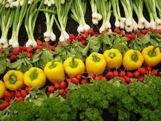 Varios vegetales Orgánicos