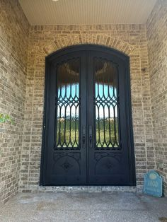 Iron Lion Entries - Custom Iron Door with custom lion medallions.