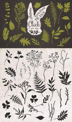 Hand drawn autumn collection+Bonus by Graphic Box on @creativemarket
