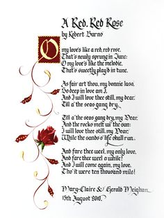 a red red rose robbie burns poem