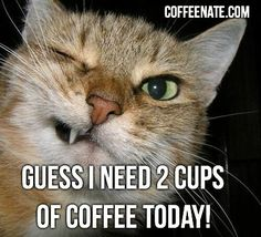 Mondays always require AT LEAST 2 cups of #coffee!  coffee, coffee, coffee, coffee, coffee!!!