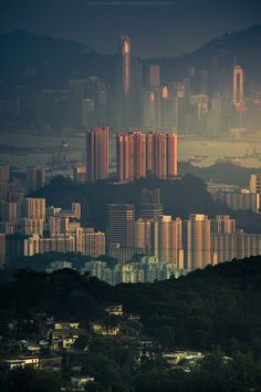 cjwho:  Tai Mo Shan country park by CoolBieRe ™  Tai Mo Shan...
