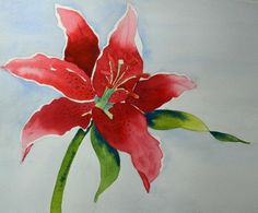 Fine Art Original Watercolor Painting of Red Stargazer Lily #Realism