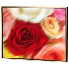 Menaul Fine Art Roses Limited Edition Framed Canvas Scott J. Menaul 1 Features: Gallery wrap style framing included Signed by artist Limited edition Also available with black floating frame Dimensions: Small dimensions: H X W Hot Pink Roses, Red Roses, Artist Canvas, Canvas Art, Art Rose, Illusion Drawings, Popular Christmas Gifts, Canvas Frame, Canvas Size