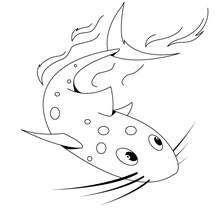 Dibujo De Un Pez Gato Dibujos Para Colorear Y Pintar Dibujos