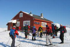 Lakkenstova i Setesdal Vesthei - Hytte - UT.no Cross Country, Norway, Skiing, Street View, Cross Country Running, Ski