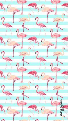 Wall paper celular feminino flamingo 58+ Ideas Flamingo Wallpaper, Flamingo Art, Iphone Wallpaper, Whatsapp Wallpaper, One Step, Beauty Tutorials, Healthy Living Tips, Art Images, Graphic Design